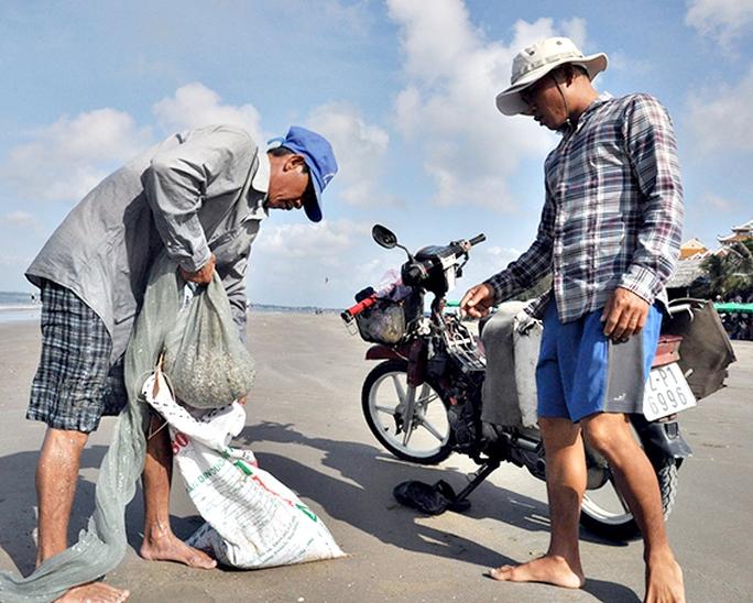 Anh Trần Văn Minh (trái) thu được khoảng 40kg ốc móng tay sau 2 giờ cào trên bãi biển Long Hải, huyện Long Điền. Ảnh: MINH THANH