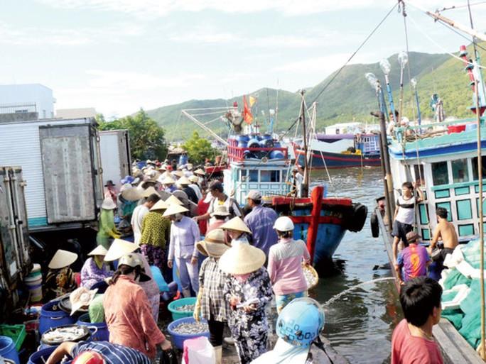 Hưng phấn với mùa cá ngừ đại dương - Ảnh 2.