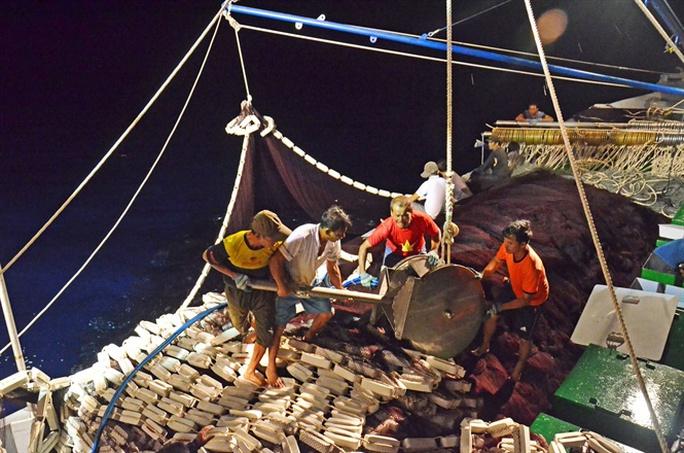 Theo ngư dân xem cá nhảy giữa biển Đông - Ảnh 2.