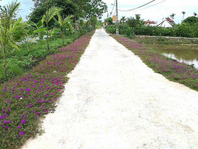 Ngỡ ngàng những con đường hoa rực rỡ làng quê miền Bắc - Ảnh 2.