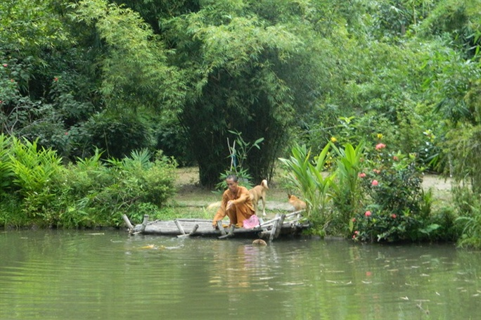 Khu rừng tre của vị ẩn sĩ núi Sơn Trà - Ảnh 1.