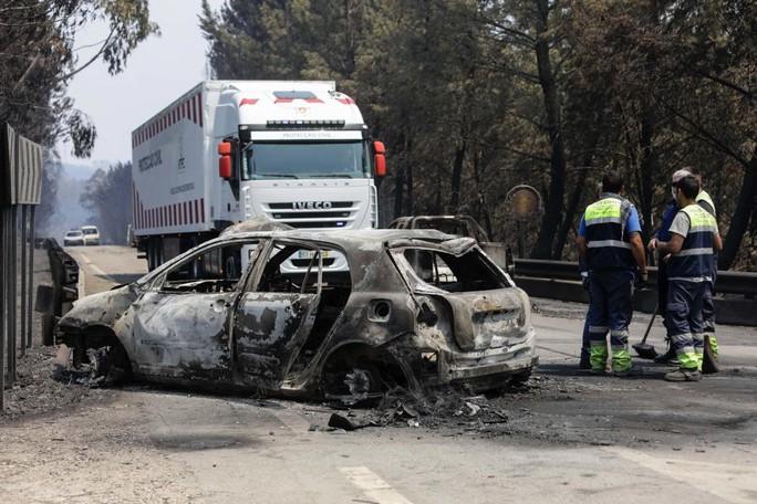 Đường cao tốc dẫn đến địa ngục ở Bồ Đào Nha - Ảnh 3.