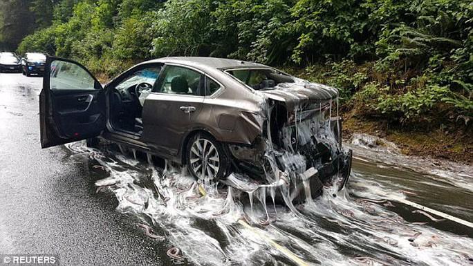 Mỹ: Cảnh tượng nhầy nhụa dễ sợ trên đường cao tốc - Ảnh 1.