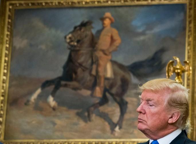 Ông Donald Trump trách móc Quốc hội vì lệnh trừng phạt Nga - Ảnh 1.
