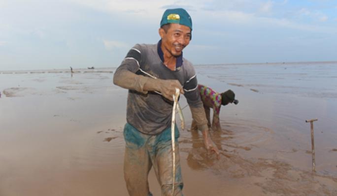 Săn cá chình mỡ ở biển Gò Công - Ảnh 1.