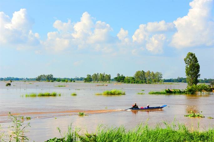 Cận cảnh săn, bắt, hái, lượm  mùa nước nổi - Ảnh 1.