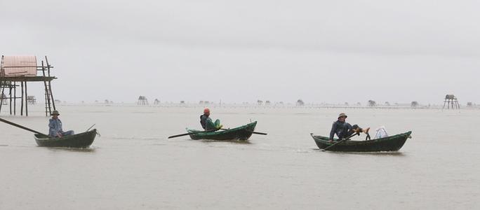 Cận cảnh bắt hàng trăm tấn ngao ở biển Tiền Hải - Ảnh 1.