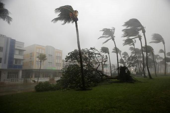 Bão Irma đổ bộ vào bang Florida - Ảnh 1.