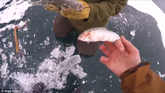 Cá lớn hóa đá khi đang nuốt cá bé - Ảnh 5.