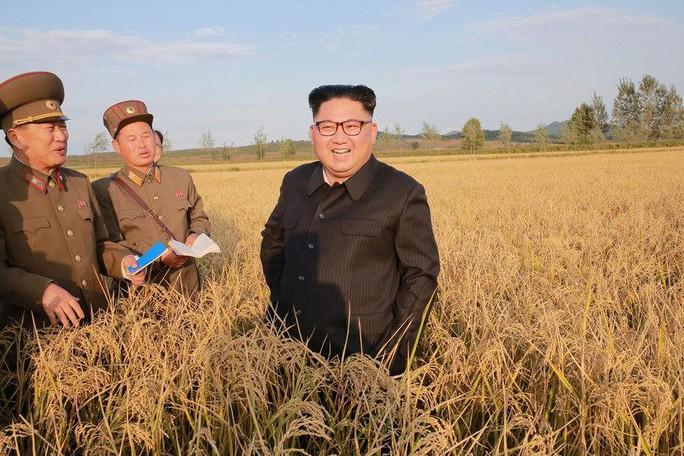 Nga âm thầm bơm kinh tế Triều Tiên - Ảnh 1.