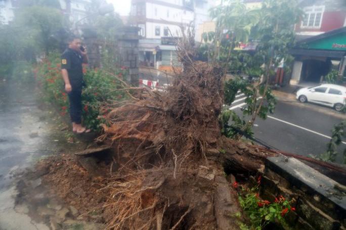 Lâm Đồng: 2 người chết, nhiều nơi bị cô lập do bão - Ảnh 2.