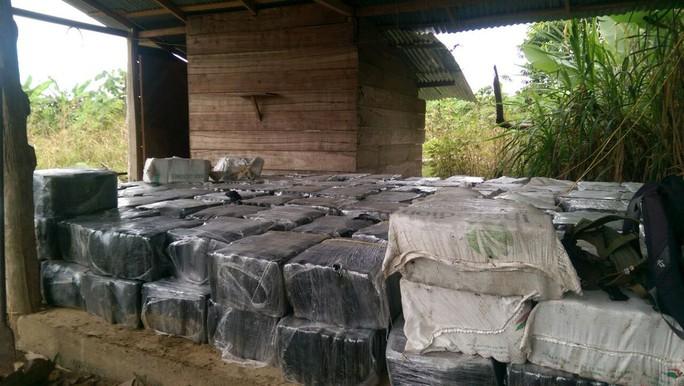 Colombia thu giữ lượng ma túy lớn nhất lịch sử - Ảnh 1.