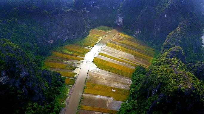 Ngất ngây trước vẻ đẹp Tam Cốc mùa lúa chín - Ảnh 4.