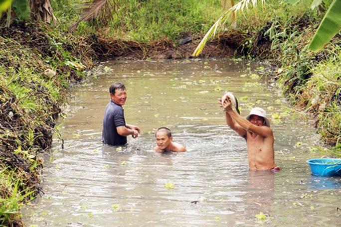 Mùa mưa, dân phố đổ đi săn đặc sản vườn - Ảnh 3.