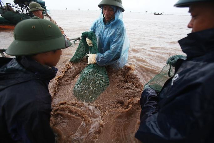 Cận cảnh bắt hàng trăm tấn ngao ở biển Tiền Hải - Ảnh 4.