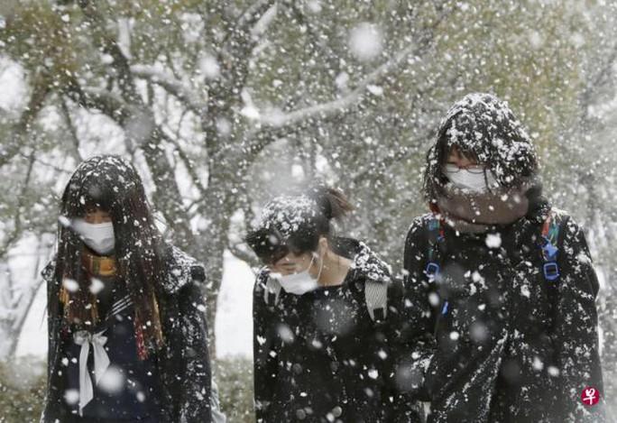 Cơ quan Khí tượng Nhật Bản cảnh báo trong ngày 16-1 bão tuyết xảy ra tại các vùng duyên hải. Ảnh: ZAOBAO