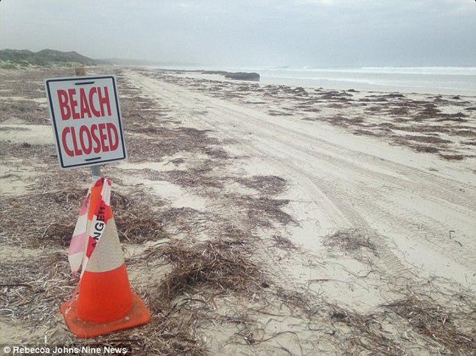Bãi biển tạm đóng cửa. Ảnh: Nine News
