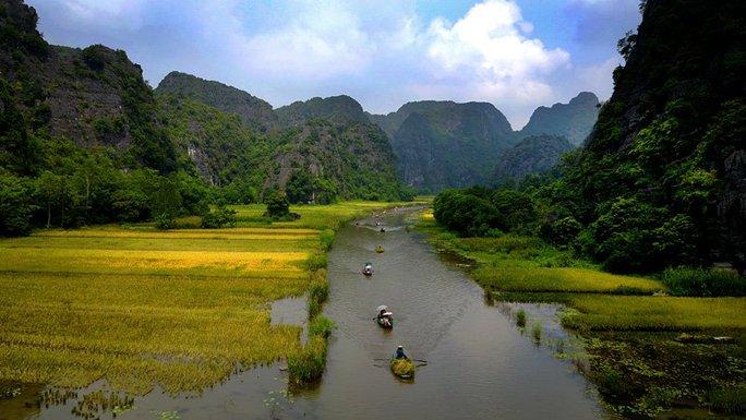 Ngất ngây trước vẻ đẹp Tam Cốc mùa lúa chín - Ảnh 2.