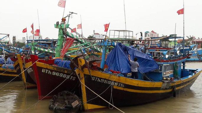 Bão số 12 quật Phú Yên - Khánh Hòa, tha Ninh Thuận - Bình Thuận - Ảnh 7.
