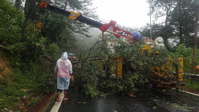 Lâm Đồng: 2 người chết, nhiều nơi bị cô lập do bão - Ảnh 7.