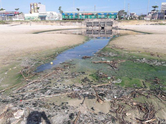 Đà Nẵng:  Hơn 30 tấn rác tấp vào bãi biển gây ô nhiễm nặng - Ảnh 3.