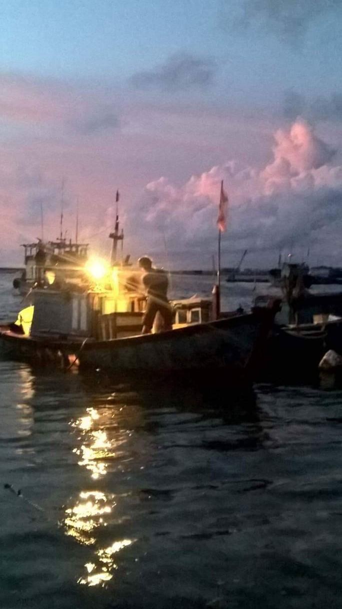Tạm giữ 2 tàu cá sử dụng súng điện khai thác trái phép ven đảo Lý Sơn - Ảnh 2.