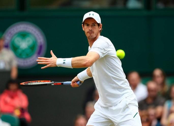Murray thua sốc ở tứ kết, Djokovic bỏ cuộc - Ảnh 2.