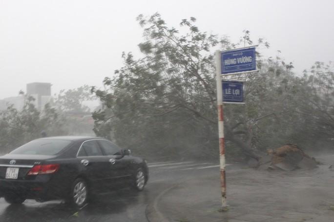 Phú Yên ách tắc, 6 người chết, mất tích vì bão số 12 - Ảnh 12.