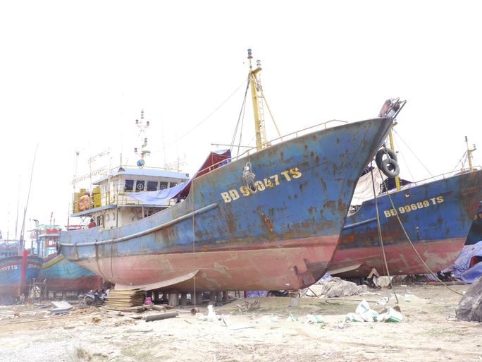 Doanh nghiệp đóng tàu vỏ thép đòi kiện Bộ NN-PTNT và khách hàng - Ảnh 2.