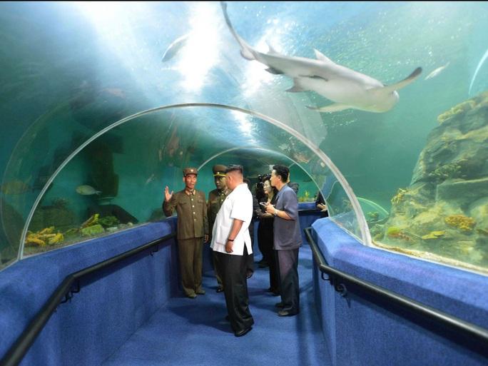 Du lịch Triều Tiên kiểu mới: Vừa tắm biển vừa ngắm bắn tên lửa - Ảnh 6.