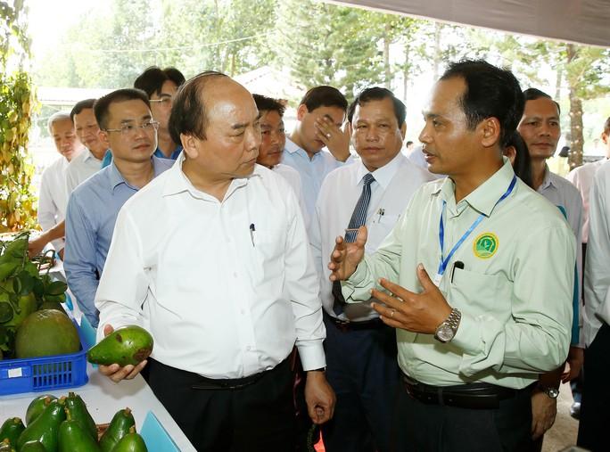 Thủ tướng tìm hiểu mô hình sản xuất nông nghiệp tại Trung tâm Nông nghiệp công nghệ cao tỉnh Bình Phước Ảnh: TTXVN
