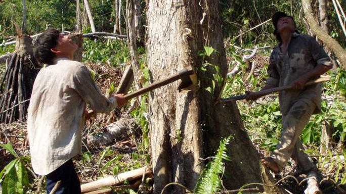 Người Tsimane sống bằng săn bắn, đánh cá và trồng trọt Ảnh: BBC