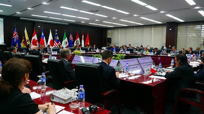 Bộ trưởng TPP-11  thống nhất ra tuyên bố chung - Ảnh 2.