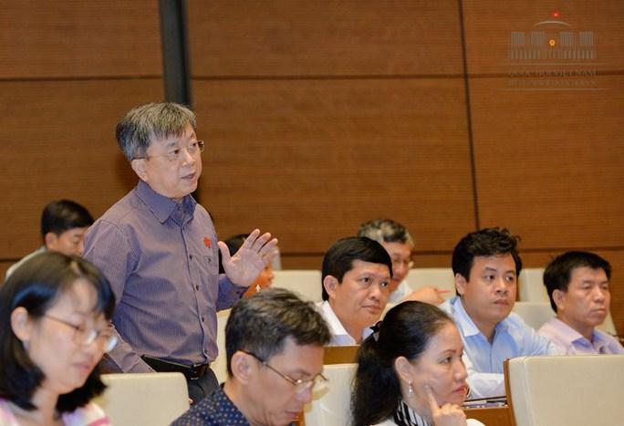 Đại biểu QH tranh luận với Phó Thủ tướng về Sơn Trà - Ảnh 2.