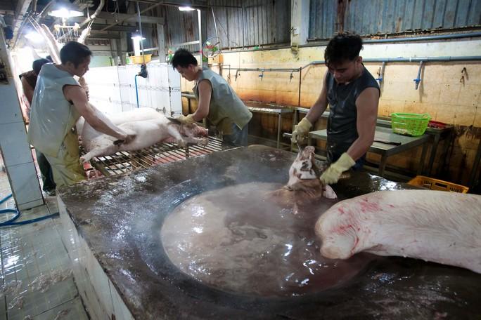 Kiểm tra giữa đêm, 100% thịt heo vẫn chưa thể truy xuất nguồn gốc - Ảnh 6.
