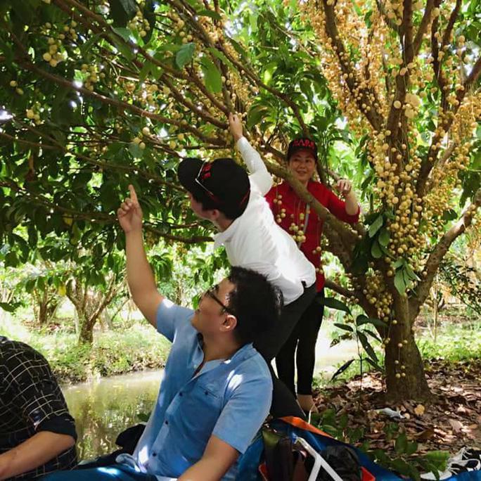 Vào mùa trái cây, du lịch miệt vườn hút khách - Ảnh 2.