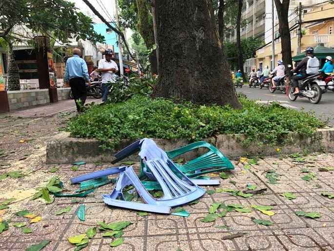 Nhánh cây rơi đè nhân viên bảo vệ trọng thương - Ảnh 1.