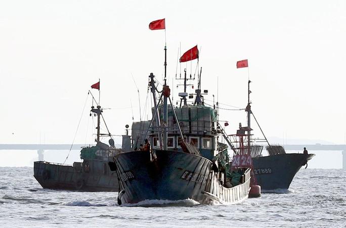 Tàu cá Trung Quốc đâm tàu cảnh sát biển Hàn Quốc - Ảnh 1.