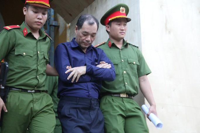 Đại án Trầm Bê: Luật sư đề nghị rút truy tố cựu lãnh đạo BIDV Gia Định - Ảnh 1.