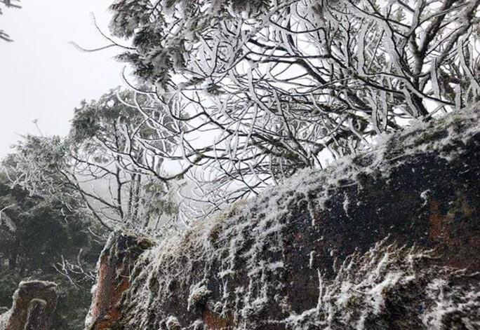 Tuyết rơi dày tại thác Bạc, Ô Quí Hồ (Sa Pa) sáng 31-1 - Ảnh 3.
