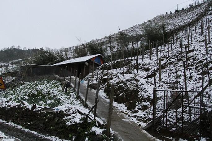 Tuyết rơi dày tại thác Bạc, Ô Quí Hồ (Sa Pa) sáng 31-1 - Ảnh 4.