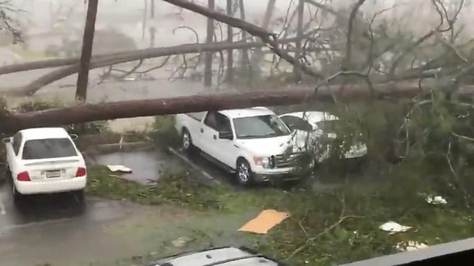 """Mỹ: Cận cảnh """"bão khủng khiếp nhất 100 năm"""" càn quét bang Florida - Ảnh 3."""