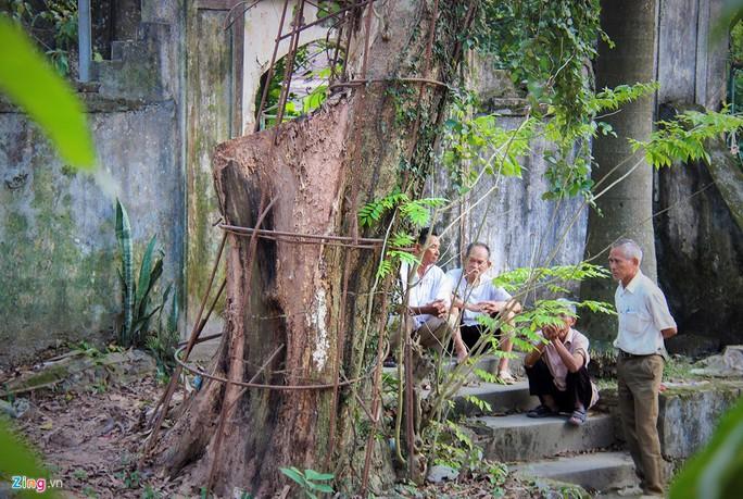 Lý lịch chi tiết của bảo vật có giá 50 tỉ ở chùa Vĩnh Phúc - Ảnh 10.