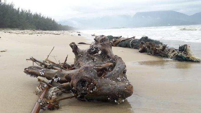 Hàng chục tấn rác bủa vây 9 km bờ biển Đà Nẵng - Ảnh 4.