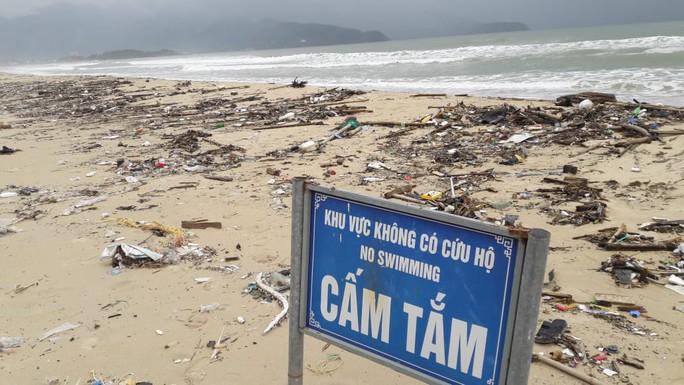 Hàng chục tấn rác bủa vây 9 km bờ biển Đà Nẵng - Ảnh 8.