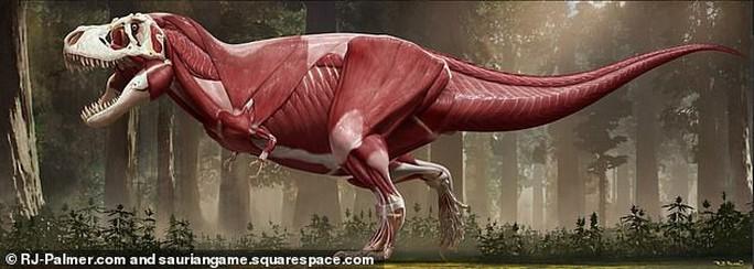 Tiết lộ gây sốc về khủng long bạo chúa - Ảnh 2.
