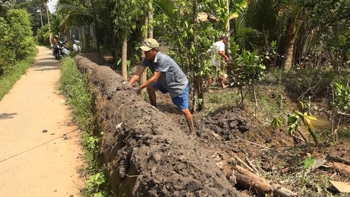 Bưởi Năm Roi chết rụng trái đầy vườn, dân khóc ròng bán 1.500 đồng/kg để làm nem - Ảnh 7.