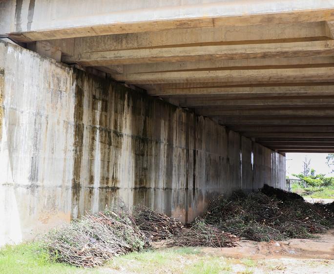 Đường cao tốc Đà Nẵng - Quảng Ngãi: Thêm nhiều cây cầu thấm nước - Ảnh 9.