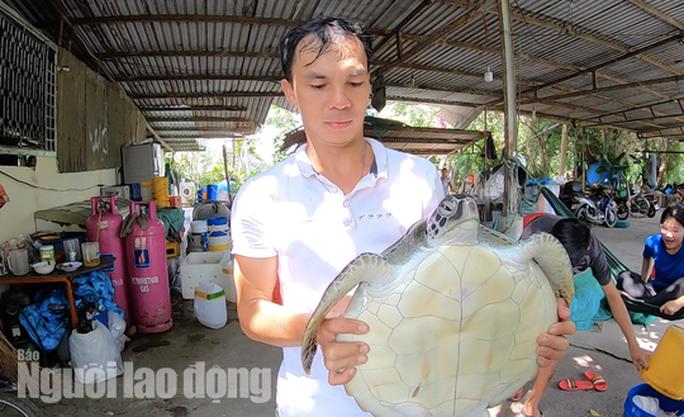 TP HCM: Phát hiện rùa biển quý hiếm, đem giao nộp cho cơ quan chức năng - Ảnh 2.