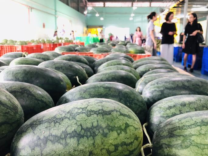 Đại gia bán lẻ Thái Lan mở trạm trung chuyển trái cây ở miền Tây - Ảnh 1.